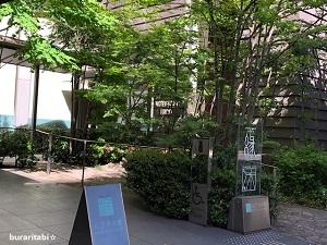 入口は木々が多い茂る
