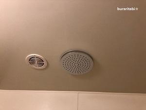 天井のレインシャワー